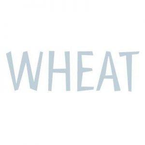 wheat dk collectie logo ondersteboven puck