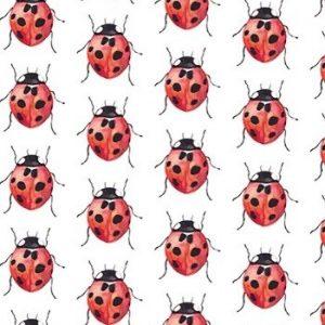 Fritsy Postkaart Lieveheersbeestjes