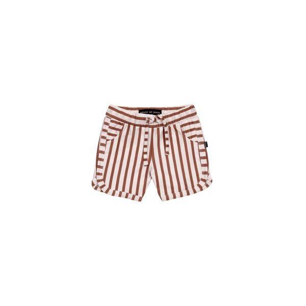 Hous of Jamie Swim Gym Shorts Baked Clay Stripes